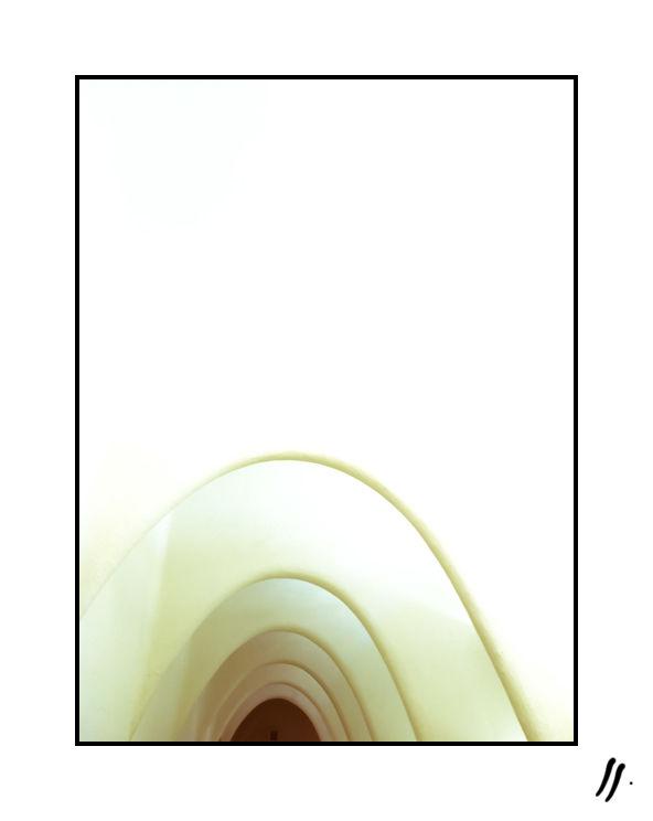 formes-baleine